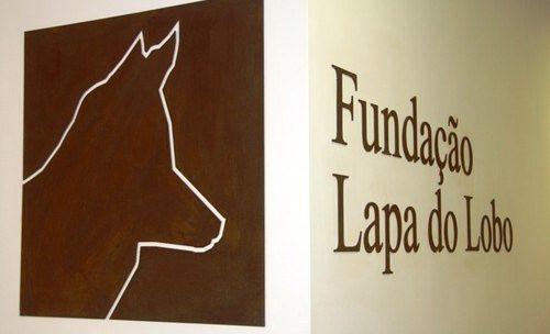 Sugestões mês fevereiro – Fundação Lapa do Lobo